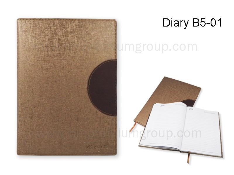 Diary B5-01